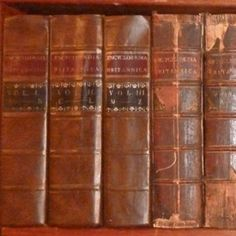 Encyclopedia Britannica. These are about the same year that I own right now. I found them junking around town one morning.