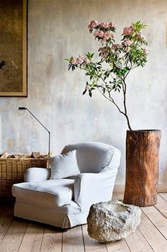 organic home decor - how can i make my walls look like that!? Love the mini tree in tree trunk!!
