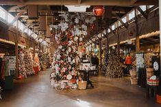 Christmas Trips, Christmas Travel, Holiday Lights, Christmas Lights, Big Island, The Good Place, Street View, The Incredibles, Seasons