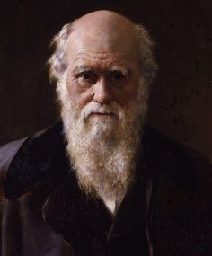 Portrait of Charles Darwin - by John Collier Charles Darwin, Robert Darwin, Beard Pictures, Theory Of Evolution, Darwin Evolution, Bald With Beard, Les Religions, People Of Interest, Famous People