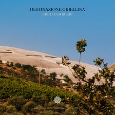Alberto Burri, commosso per la devastazione provocata dal terremoto del 1968 a Gibellina, propose di coprire le macerie del paese distrutto con un'immensa colata di cemento bianco.  Il risultato è uno dei capolavori mondiali di land art.