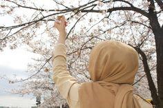 وغداً تزهر في البيداء امنيتي وأحوم طيراً في سماوات الفرح   المحجبات#hijab_photography#فوتوغرافي