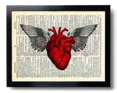 Heart Anatomy Wings Love Art Print Art Print on Dictionary Page, Anniversary Gifts for Boyfriend, Anatomy Poster Print, Bedroom Art 108
