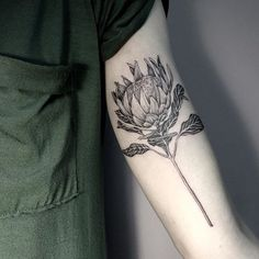 Discover recipes, home ideas, style inspiration and other ideas to try. Fine Line Tattoos, Love Tattoos, Beautiful Tattoos, Body Art Tattoos, Tattoos For Women, Flor Protea, Thistle Tattoo, Single Needle Tattoo, Native Tattoos