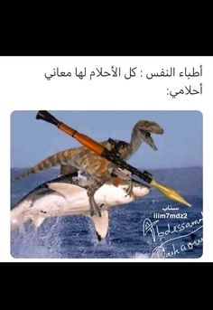 Arabic Memes, Arabic Funny, Funny Arabic Quotes, Funny Quotes, Islamic Quotes On Marriage, Disney Princess Drawings, Funny Comments, Foto Jungkook, Baby Shark