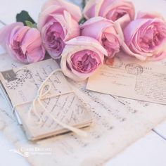 I love these David Austen roses with their layers of petals. I just wish they lasted longer. Happy weekend to you! by claireb_photography Claire Austin, David Austin, Insta Feed Goals, David Austen Roses, Insta Photo Ideas, Insta Ideas, Insta Pictures, Happy Weekend, Love Letters