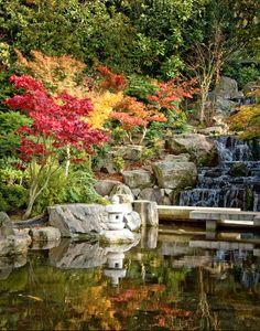 Oriental Garden in Holland Park.