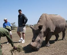 """Yao Ming stands tall for Elephants: """"Say No To Ivory""""; trio ..."""