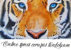 Jobb agyféltekés rajztanfolyamok - Művészház Techno, Marvel, Animals, Animales, Animaux, Animal, Animais, Techno Music
