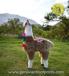 Stuffy alpaca big 47 brown and white Alpaca Fur Stuffed | Etsy Big Stuffed Animal, Alpaca Stuffed Animal, Alpaca Blanket, Baby Alpaca, Presents For Him, Small Dogs, Fur Babies, Brown, Crafts
