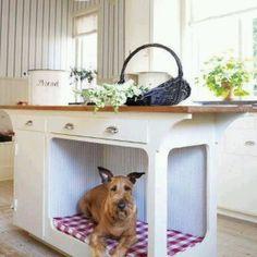 Dog place
