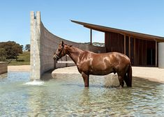 Australian Equestrian Centre by London's Seth Stein Architects and Watson Architecture + Design | Featured on Sharedesign.com