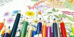 Livros de colorir para adultos!- Blog Pitacos e Achados -  Acesse: https://pitacoseachados.wordpress.com -  https://www.facebook.com/pitacoseachados -  #pitacoseachados