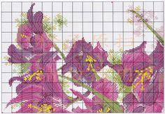Gallery.ru / Фото #2 - ****flores***** - celita