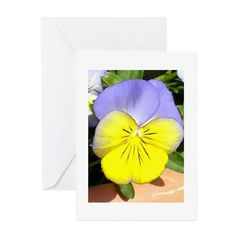 Pansy Greeting Cards on CafePress.com