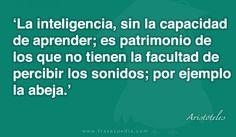 La inteligencia, sin la capacidad de aprender; es patrimonio de los que no tienen la facultad de percibir los sonidos; por ejemplo la abeja.