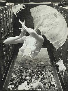 岡上淑子 / Toshiko Okanoue / 「落下する淑子」(1956年)