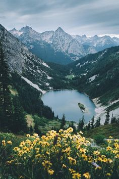 alecsgrg: North Cascades National Park | ( by... - A fairy tale girl stuck in her dreams