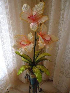 Orquídea Gigante