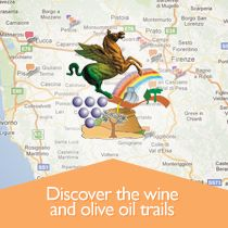 Chianti Classico Wine and Olive Oil Trail - tourism.intoscana.it