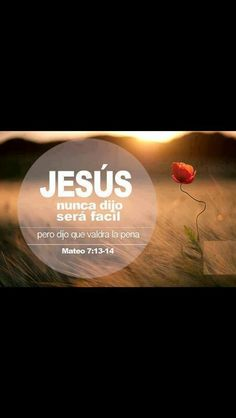 Mi esperanza está puesta en Dios Christian Messages, Christian Quotes, Pray More Worry Less, Healing Words, God First, Bible Verses Quotes, Spanish Quotes, Quotes About God, Dear God