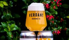 Verdant (UK) - All Together // IPA // 6.5% Blogger Templates, Brewing Co, Ipa, Brewery, Wine Glass, Pure Products, News, Wine Bottles