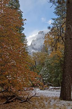 Another photo shows Yosemite National Park in its autumn colors after a light overnight snowfall. It is absolutely beautiful.