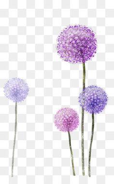 Pissenlit Common Dandelion Printing, others free png Flower Png Images, Dandelion Flower, Png Photo, Floral Border, Flower Backgrounds, Grafik Design, Photoshop Elements, Purple Flowers, Watercolor Flowers