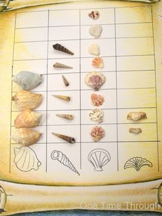 Ocean Shells Art and Math One Time Through Ocean Shells Art and Math One Time Through Ashley Lindquist ashililyy ocean Math Science Activity Objective Given a certain number nbsp hellip Ocean Activities, Classroom Activities, Summer Activities, Classroom Ideas, Maths Eyfs, Reggio Classroom, Maths Resources, Math Math, Indoor Activities