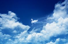 floating in the sky by Richu Joseph on 500px