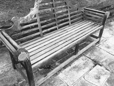 [P]大学の椅子。あまり人が座っているところをみたことがない。