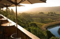 Beyond Cape Town, Kruger, and Franschhoek lies the Garden Route. Lush landscapes, gorgeous animals, and lazy sundowners await you on this once-in-a-lifetime road trip in South Africa.