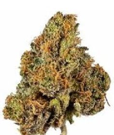 Users describe Cherry Pie Kush as a creeper that keeps on creeping. It is a sativa dominant hybrid & makes you feel energetic, cheerful Buy Weed Online, Online Buying, Thc Oil, Sweet Cherries, The Smoke, Cannabis, Cherry, Pie, Stuff To Buy