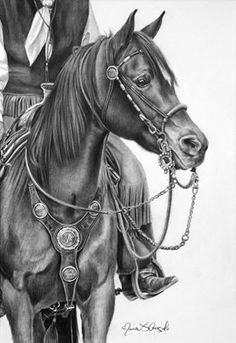 artist; Maria D'Angelo - view more here: http://www.mariadangelo.com/ #AnimalArt #horse Love all the detail on the tack.