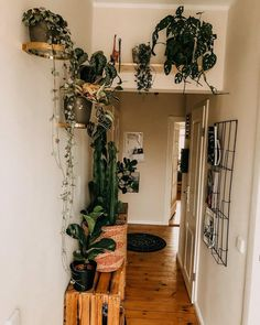Your vacation destinations for Tell me inspiration # hallway # plants # inspo Minimalist Bedroom Boho, Dollar Tree Gifts, Aesthetic Rooms, Diy Garden Decor, Dream Decor, Amazing Gardens, Home Interior Design, Ladder Decor, Building A House