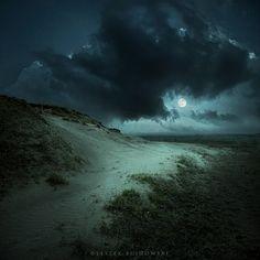 A moonlit path