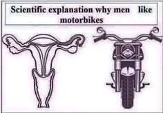 Is that so & Tech Best Memes, Funny Memes, Motorised Bike, Biker Clubs, Biker T Shirts, Pet Store, Things To Know, Motorbikes, Poster