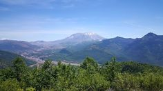 On the way to Mount Saint Helens in Washington State. Copyright © 2015 by Natalie de Clare.