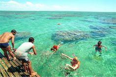 """Parachos de Maracajaú - o Paraíso fica aqui! Localizado no litoral norte de Natal, a Praia de Maracajaú com suas águas mornas são convidativas para um relaxante mergulho e para quem deseja conhecer de perto a fauna e flora do litoral potiguar. A praia faz parte da Área de Proteção Ambiental (APA) por causa do conjunto de corais em sua costa, os chamados """"Parachos de Maracajaú"""" e ainda preserva seus costumes e tradições através da vila de pescadores."""