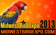 Order your 2013 All Access Passes today!!!  www.midwestbirdexpo.com