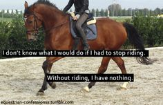 This has happened to me before and its awful.to have a whole in your heart that nothing can fill but the love and warmth of a horse. Without horses, I'm not whole. Equine Quotes, Equestrian Quotes, Equestrian Problems, Horse Love, Horse Girl, Inspirational Horse Quotes, Motivational Quotes, Horse Riding Quotes, Funny Horses