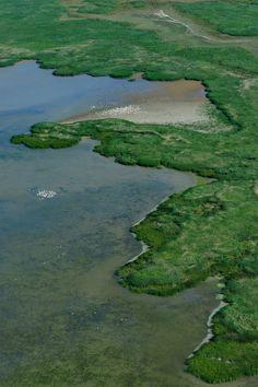 Danube Delta Romania                                                                                                                                                                                 More