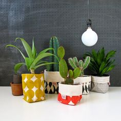 Want to give you plants a new look? Pop them into one of these handy fabric buckets; no need to repot.