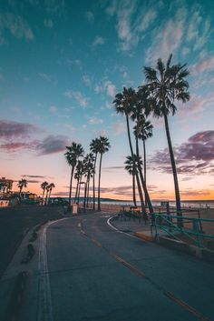 70 Ideas palm tree sunset california cities A few varied photos that I like Look Wallpaper, Summer Wallpaper, Beach Wallpaper, Nature Wallpaper, Usa Wallpaper, View Wallpaper, Iphone Wallpaper, Beach Aesthetic, Travel Aesthetic