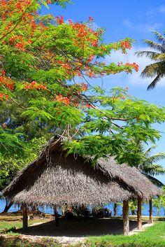 Saipan - Northern Mariana Islands, Micronesia