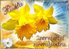 Easter Wallpaper, Erika, Celebration