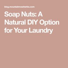 Soap Nuts: A Natural DIY Option for Your Laundry