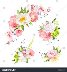 Bright birthday bouquets of wild rose, peony, orchid, carnation, ranunculus, hydrangea, blue berries and green leaves. Vector design elements.