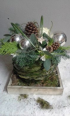 Christmas Decorations, Christmas Ideas, Terrarium, Creative Ideas, Advent, Plants, Home Decor, Weihnachten, Everything