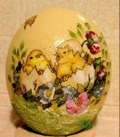 chicks ostrich-egg